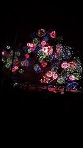 琵琶湖花火(山中)